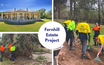 Fernhill Estate Project